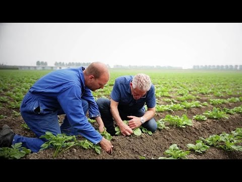 Technology Supports Sustainable Farming