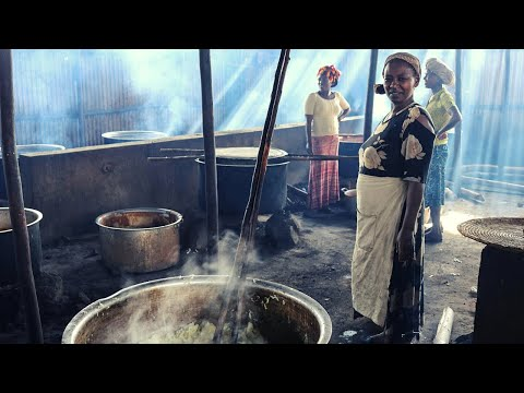 An Ethiopian Expedition: Learn All About Ethiopia!
