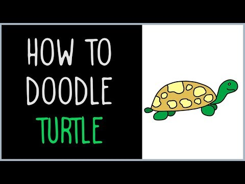 How to Draw a Turtle (drawing tips)