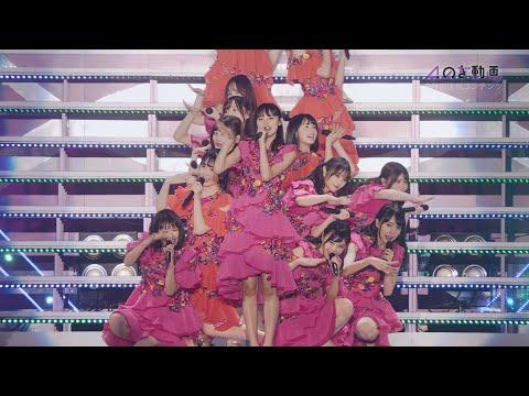 【美しい!】乃木坂46人気メンバーランキング!No.1はあの人!