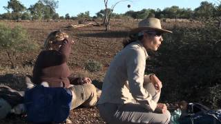 arid zone fertile ground