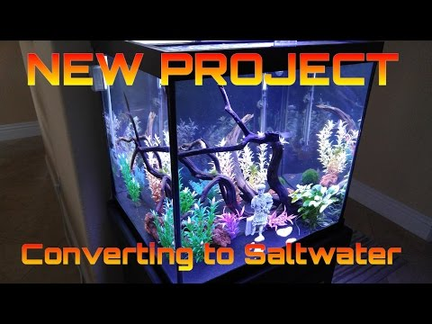 HOW TO: Setup a 27 cube saltwater aquarium - NEW PROJECT