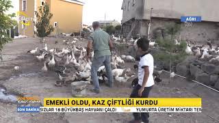 Emekli Oldu, Kaz Çiftliği Kurdu