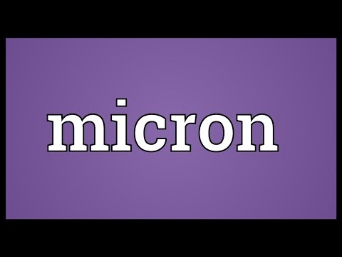 Micron Meaning