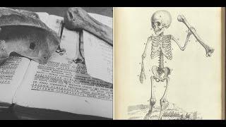 Как выучить анатомию!? Остеология, 1 курс
