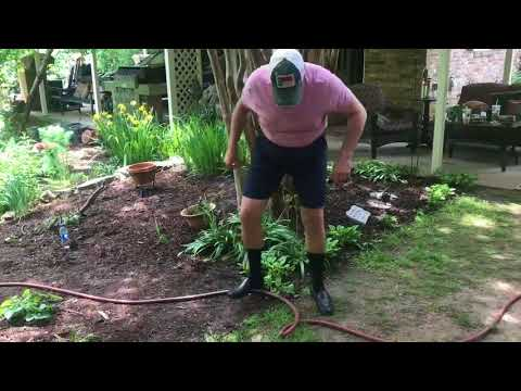 """""""That guy"""": Watering the plants 
