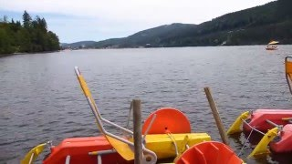 14 - California on Tour - Camping Weiherhof Titisee