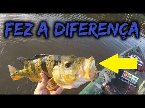 ADIVINHE Qual Isca Salvou A Pescaria!
