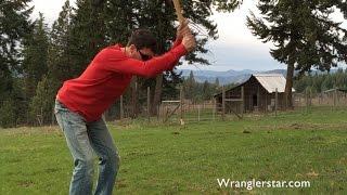 Planting A Forest | Wranglerstar