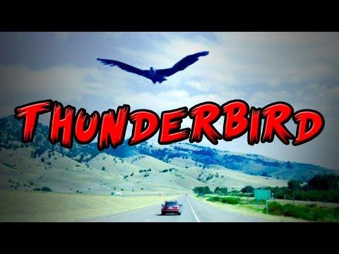 Cryptids - Thunderbird