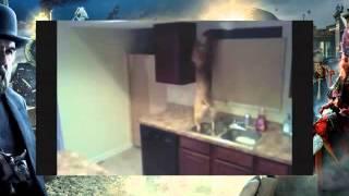 Находчивая собака совершает побег из кухни!(, 2013-09-22T11:37:11.000Z)