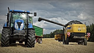 Żniwa i siew na pomorzu | New Holland CX6080, T7.230, T6050, T6050 Plus