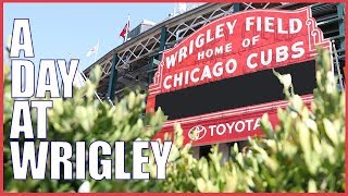 A Day At the Ballpark: Wrigley Field