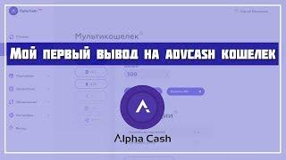 Правдивая информация про заработок на Robot Cash