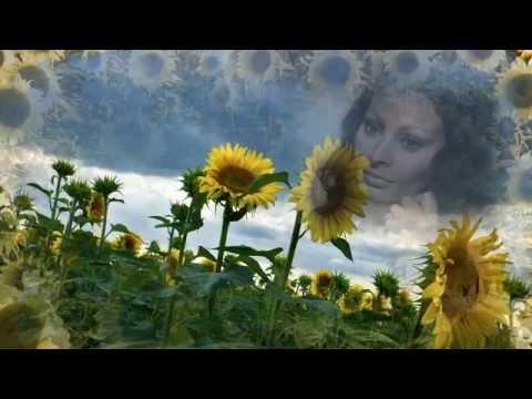 Итальянская актриса Софи Лорен фото сейчас и в молодости