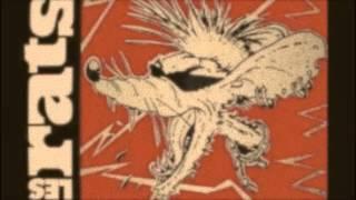 compil punk rock français
