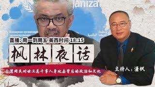 台湾网民对世卫总干事人身攻击背后的政治和文化《枫林夜话》2020.04.09 第21期