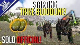 STARTING THE TRIKE LINE! | Solo PvP Official Servers - Ark: Survival Evolved