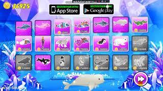 Играем в игру Шоу Дельфинов 8