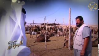 في ضيافة الهلاليين في جنوب الجزائر 4