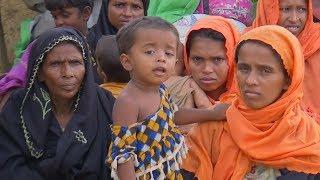 Бангладеш вопреки призыву ООН выслал мусульман-рохинджа в Мьянму (новости)