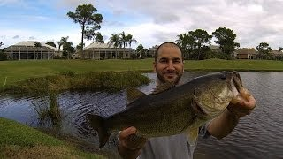 BASS FISHING (Florida Golf Course Pond) Dec./Jan.