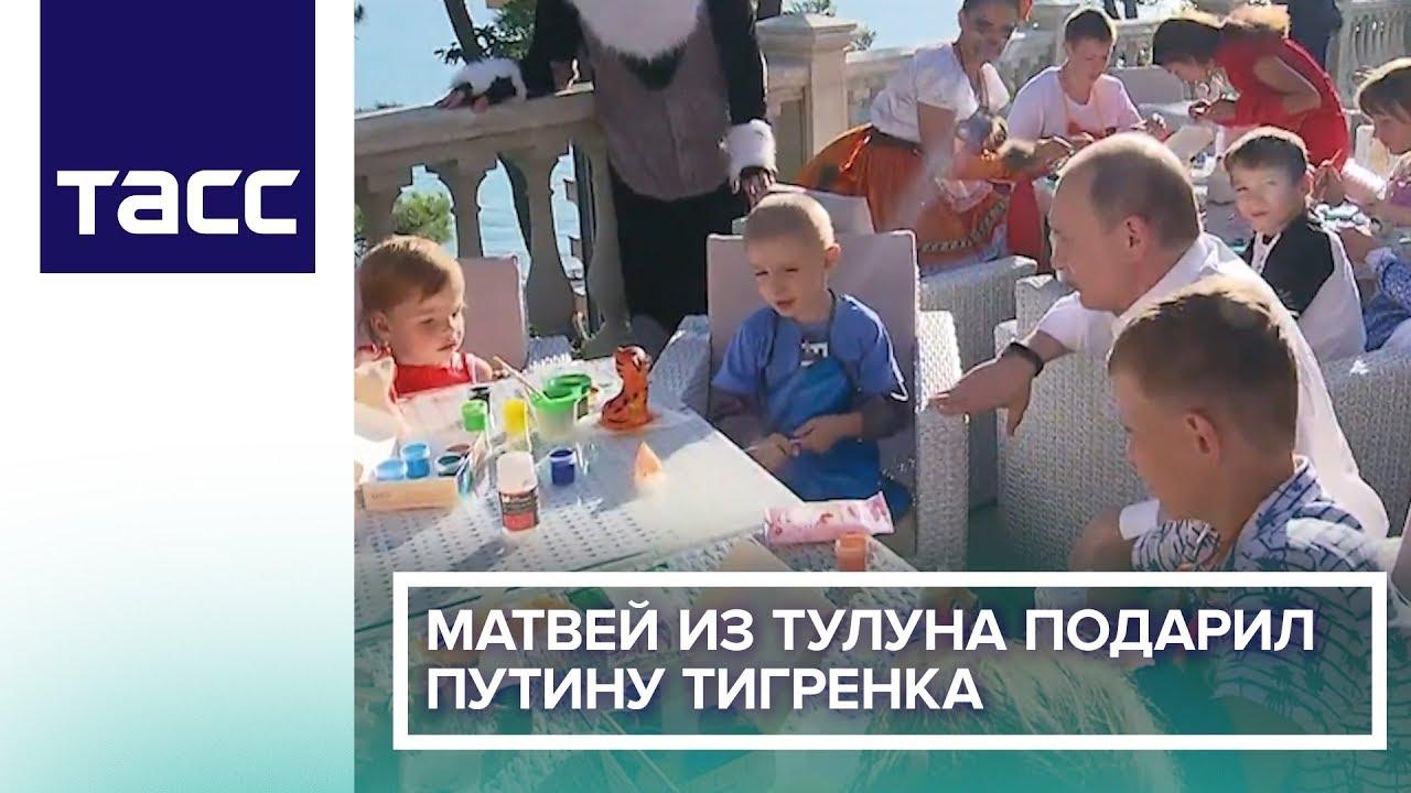 Матвей из Тулуна подарил Путину тигренка