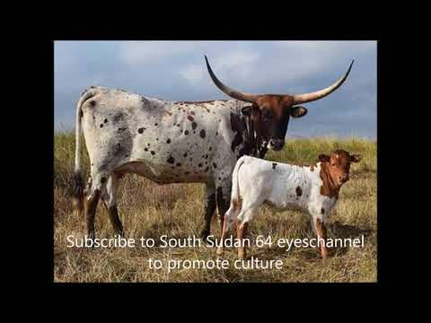 Paweny da Atar Traditional song Volume 1- 2020