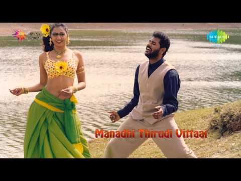 Manadhai Thirudivittai | Manja Kaattu Maina song