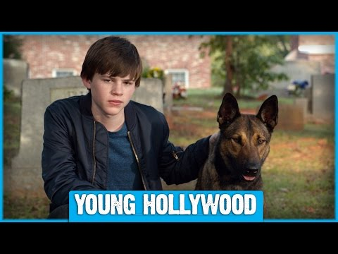 MAX Star Josh Wiggins on Dogs as CoStars vs Pets!