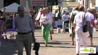 La Route des Artistes Saint Rémy de Provence
