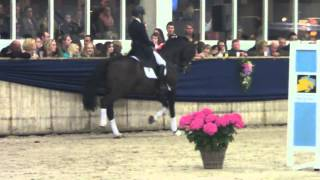 Kirsten Brouwer with Westenwind approved KWPN stallion
