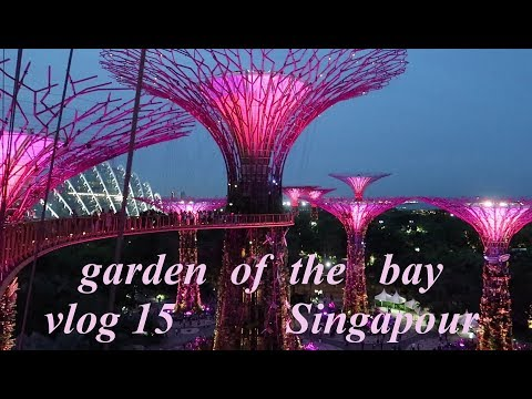 2em jours à Singapour visite de orchard road et garden by the bay singapore    vlog