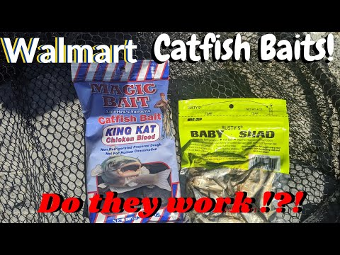 Catfishing With WALMART BAITS!! DO They WORK !?!