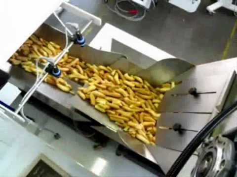 TECHNO D - Packaging machine for breadsticks