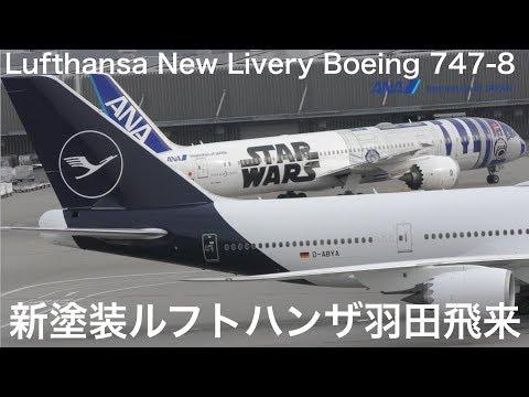 ひなまつりフライト ルフトハンザ 新塗装 羽田空港来日 Lufthansa New Livery Boeing 747-8 Take Off Tokyo International Airport