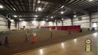 Boom Towne Canine Campus 2012 Tour | Dog Training | Boarding | Grooming | Daycare