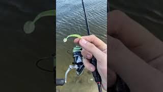 Начало мая а рыбы дуром Окунь с каждой проводки Рыбалка на спиннинг ультралайт