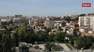 Marseille, l'autre capitale des Comores - C'est vous la France (20/03/2019)