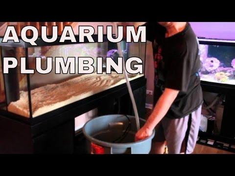 saltwater aquarium sump plumbing on 125 gallon aquarium