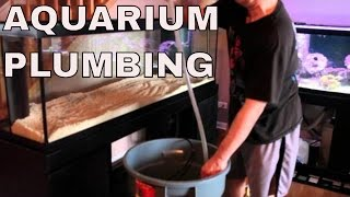 125 Gallon Salt Water Aquarium Build Diy Plumbing To Sump