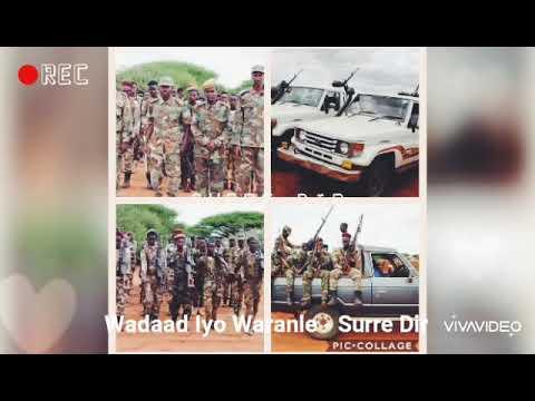 Download Wadaad Iyo Waranle Direed: Barbaarta Direed Surre Mahe Dir - Mudug
