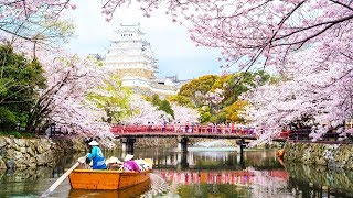 Video The Best Places to Go in April download MP3, 3GP, MP4, WEBM, AVI, FLV Mei 2018