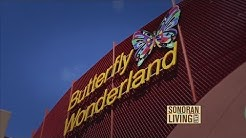 Butterfly Wonderland is America's largest butterfly atrium