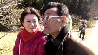 千葉テレビ街かどクイズ収録・横芝光町坂田城跡梅まつり