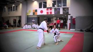 Ju-Jitsu Cup Denmark 16th april 2011 Pairs Demo