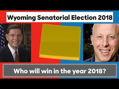 Analysis of the Wyoming Senate Election 2018 |