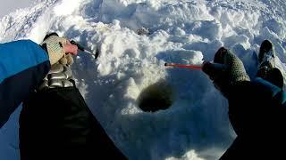 Рыбалка на севере ловля окуня на озере