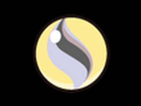 Pokmon Shuffle Getting A Mega Stone For Kangaskhan Youtube