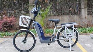 Электровелосипед Vega Lama (Skymoto)